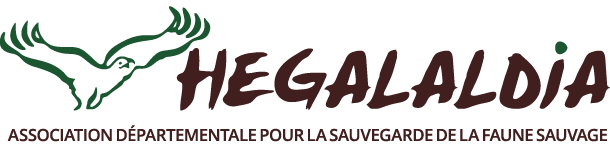 Logo Hegalaldia