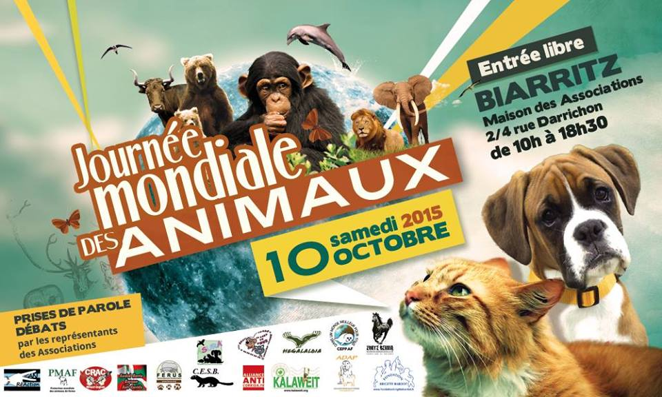 journee-animaux--fb-11667505